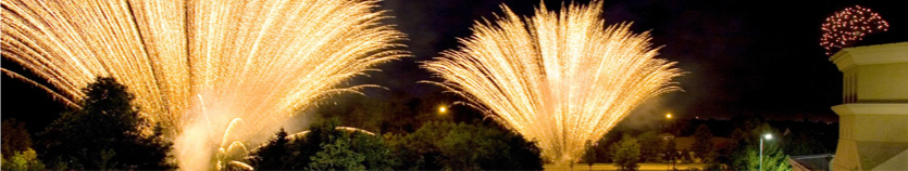 a garden with fireworks going off