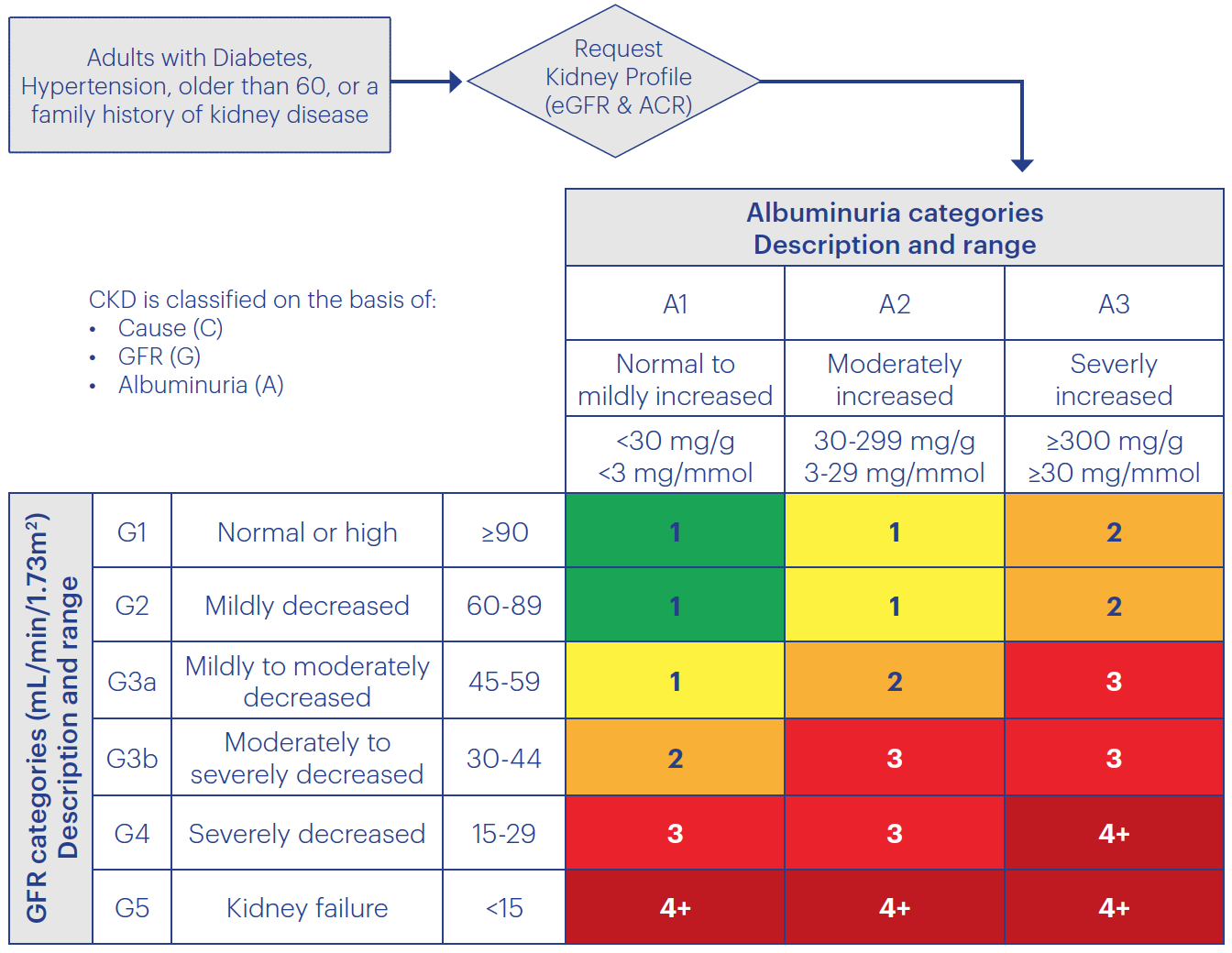 Risk of Chronic Kidney Disease Progression and Frequency of Assessment