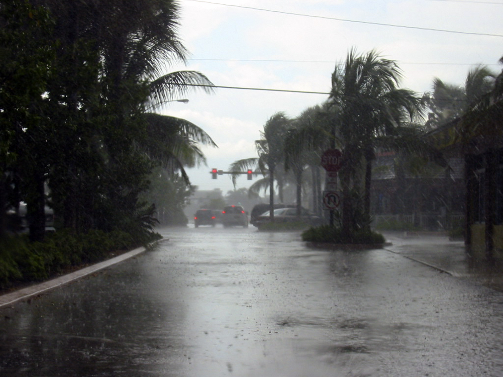 NKF Hurricane Irma Relief Fund
