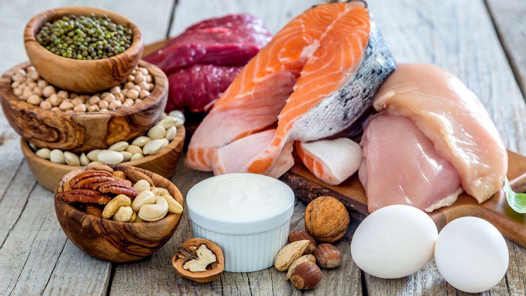 renal diet protein limit